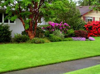 Lawn Care Ballwin Mo Lawn Masters