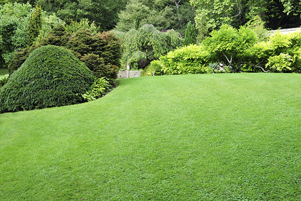 Lawn Care St Charles Mo Lawn Masters