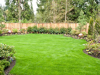 How to Perform Lawn Treatments in Ballwin MO for Successful Pre-Emergent Control?