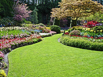 Landscaping in Manchester MO during Mid-Spring Months: Advice from Our Experts