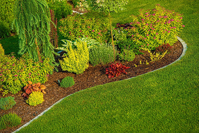 Lawn Treatments in Cottleville MO